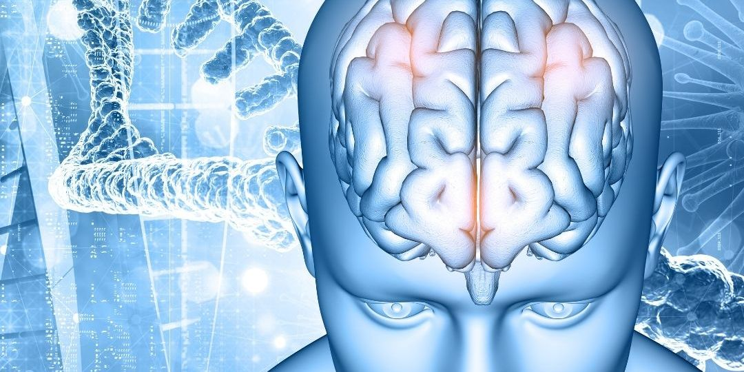 Brain tumor Illustration